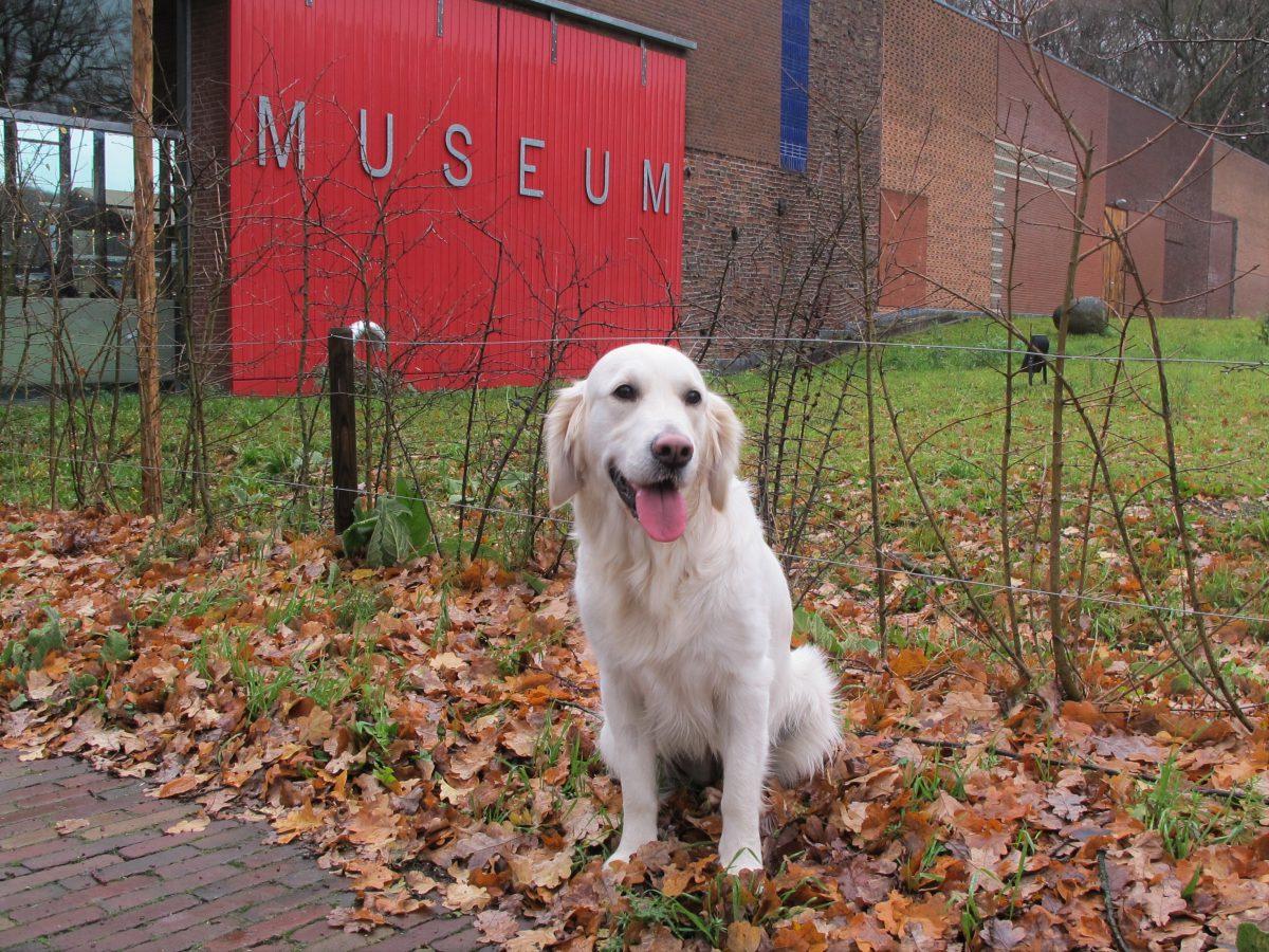 Met je hond naar het Openluchtmuseum in Arnhem: de museumhond